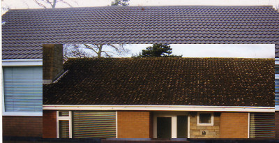 Cleaning roof tiles - before and after.